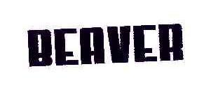 BEAVER25商标分类