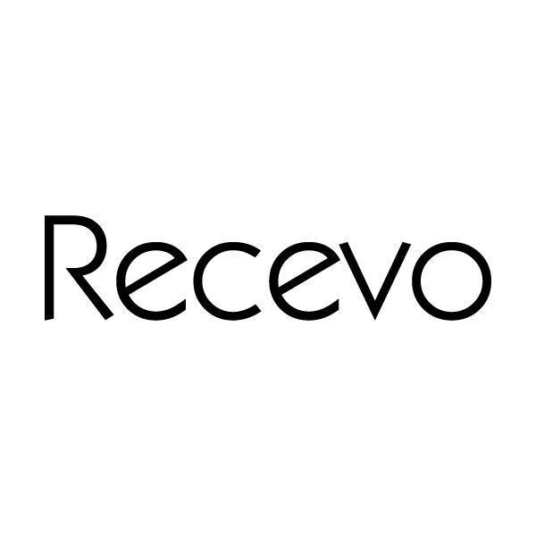 RECEVO25商标分类