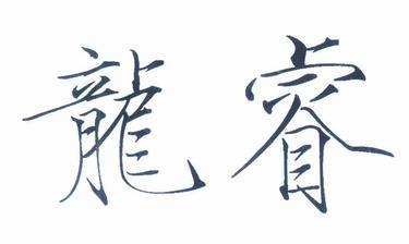 龙睿30商标分类
