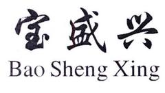 宝盛兴08商标分类